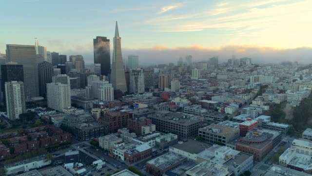 san francisco - san francisco california stock videos & royalty-free footage