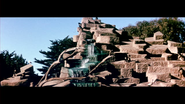 vídeos de stock, filmes e b-roll de 1955 san francisco zoo - jungle gym