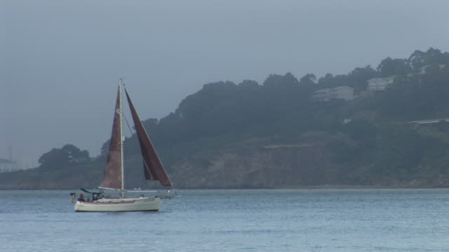 san franciscosailboat in san francisco bay in san francisco united states - ferry stock videos & royalty-free footage