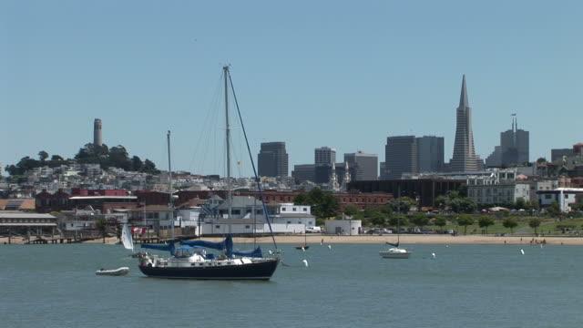 vídeos y material grabado en eventos de stock de san franciscosailboat in san francisco bay in san francisco united states - torre coit