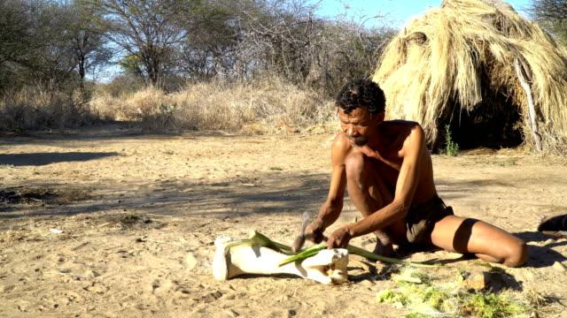 San people of Namibia (Bushmen) , daily life