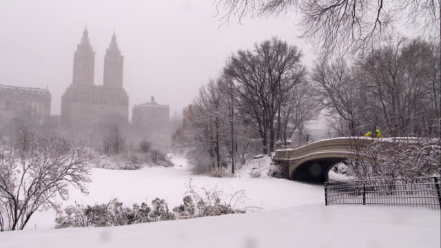 san remo overlooking the lake in central park during a snowstorm - remo stock videos and b-roll footage