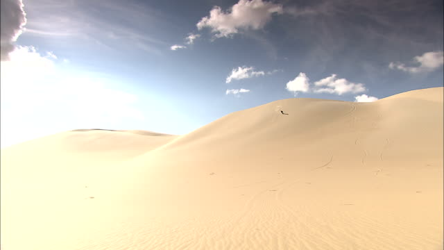 a sand boarder slides down a desert dune. - man made stock videos & royalty-free footage