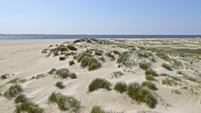 aerial sanddünen entlang der küste - sanddüne stock-videos und b-roll-filmmaterial