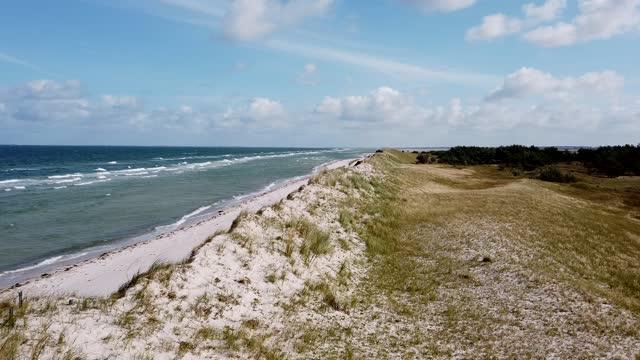 sand dune at the baltic sea, beach - オオハマガヤ属点の映像素材/bロール