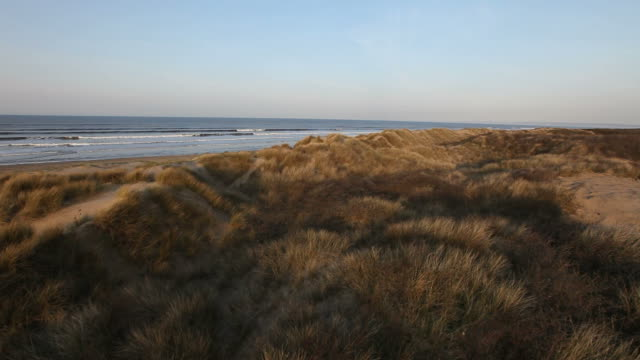 Sand dune heath helicopter buzz