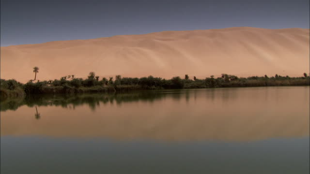 a sand dune reflects in an oasis near ubari libya. available in hd. - desert oasis stock videos & royalty-free footage