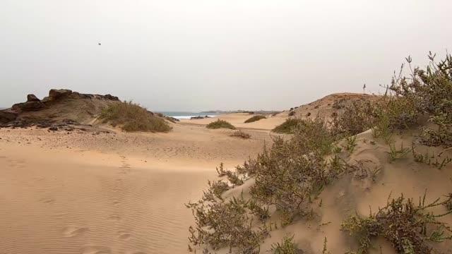 vídeos y material grabado en eventos de stock de dunas de arena y playa en el castillo en fuerteventura - duna de arena