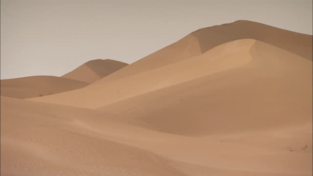 Sand dunes in desert Algeria Available in HD.