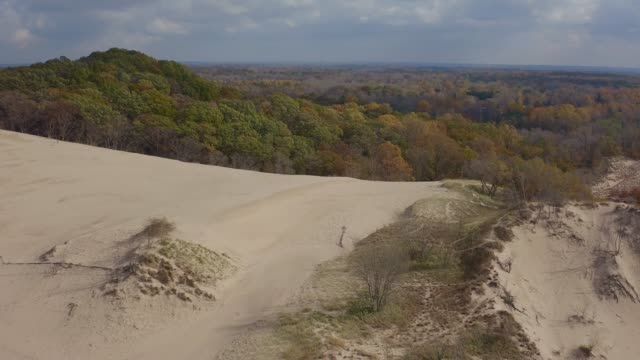 sand dunes - michigan video stock e b–roll