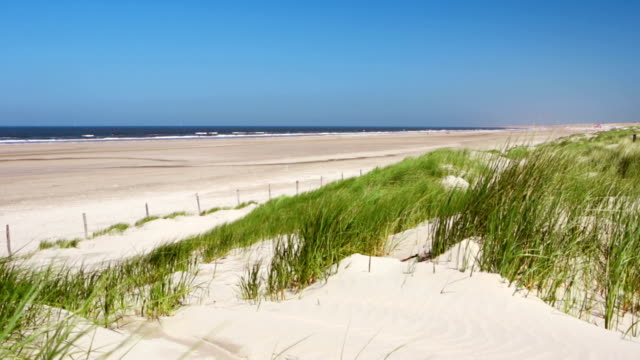 stockvideo's en b-roll-footage met sand dunes with grass and beach on a clear day - nederland