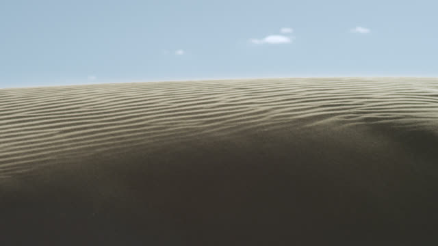 sand grains blow across dune in desert, south africa - sand dune stock videos & royalty-free footage