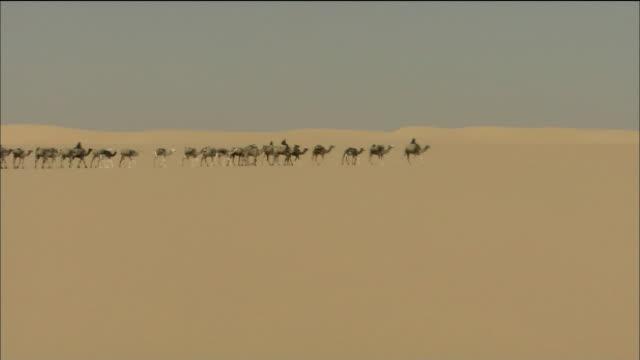 Sand Of The Desert
