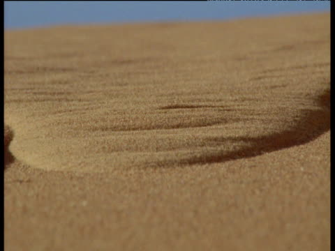 sand slides down slip face of desert dune towards camera - sand stock videos & royalty-free footage