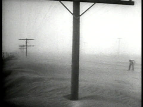 vidéos et rushes de sand storm across plains telephone wires ls dried stream under bridge drought ha ws steer on dry land ws dust storm great depression - tempête de poussière