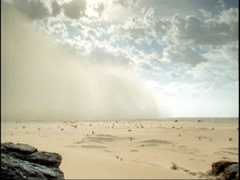 vidéos et rushes de sand storm races across sahara desert, niger - aride