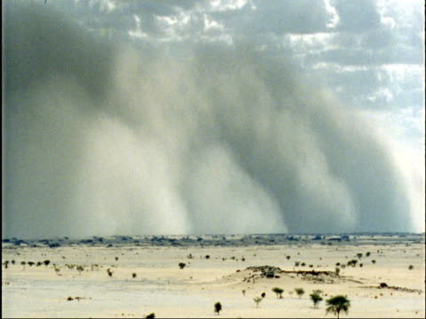 sand storm races across sahara desert, niger - ニジェール点の映像素材/bロール