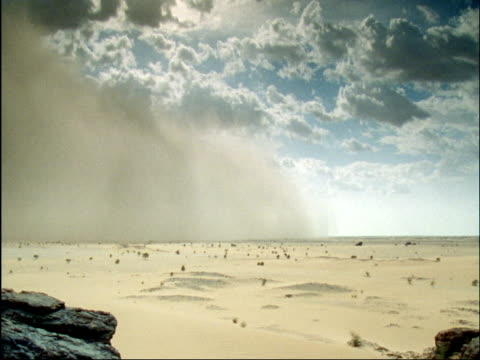 sand storm races across sahara desert, niger - sandstorm stock videos & royalty-free footage