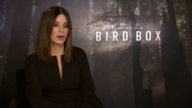 sandra bullock talks about new netflix release bird box - netflix stock videos & royalty-free footage