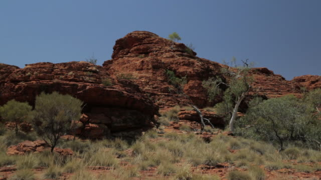sandstones rocks and shrubs, king's canyon,  nt - northern territory australia stock videos & royalty-free footage