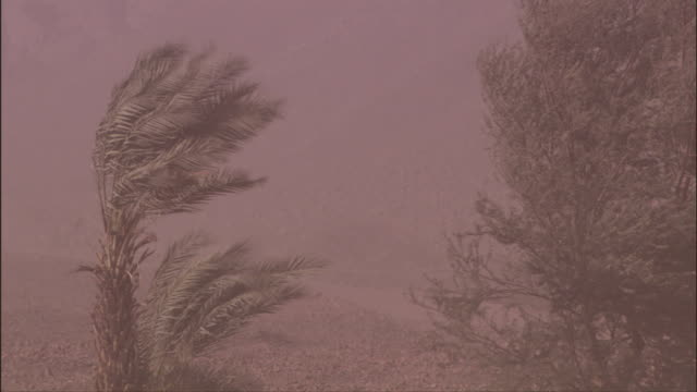A sandstorm blows through Timna Valley, Israel. Available in HD