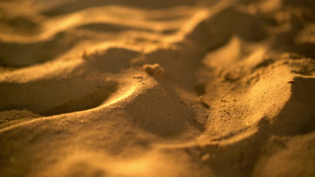 sandy beach background with night light - sand dune stock videos & royalty-free footage