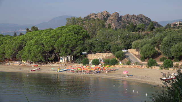 sandy beach in a bay with pine trees - spiaggia stock videos & royalty-free footage