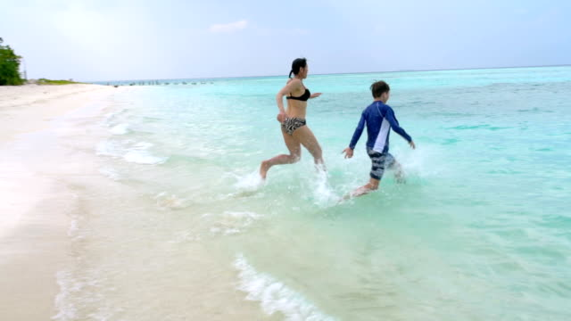 sandstrand auf den malediven - tropical climate stock-videos und b-roll-filmmaterial