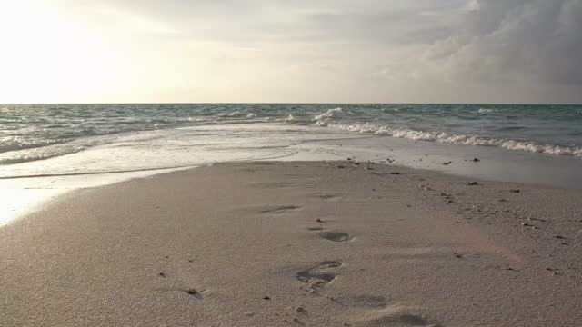sandy beach with footprints in sunlight - wet wet wet stock videos & royalty-free footage
