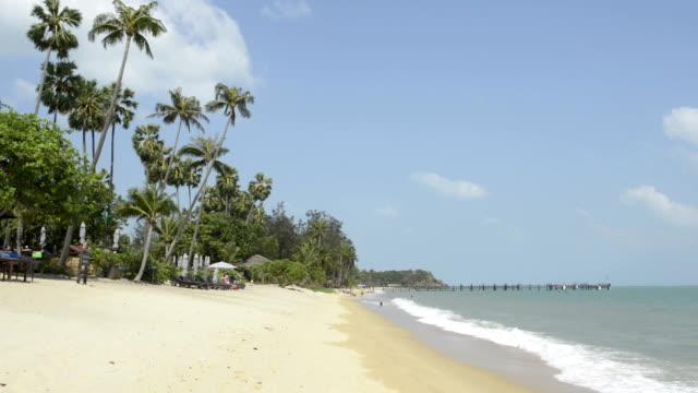 sandy beach with palm trees - insel ko samui stock-videos und b-roll-filmmaterial