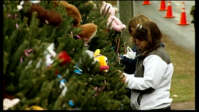 vigils held usa connecticut newport ext people laying floral tributes next to christmas tree woman looking at soft toys placed on christmas trees as... - newtown connecticut stock videos & royalty-free footage