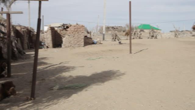 sandy landscape of the typical karakum desert village of yerbent in central turkmenistan - isoliert stock-videos und b-roll-filmmaterial