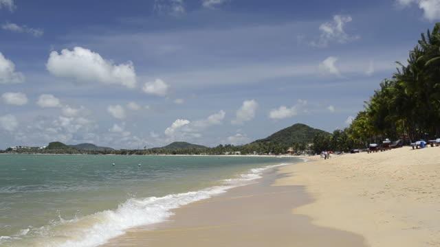 ms sandy mae nam beach with palmtrees near ko samui island / mae nam, ko samui, thailand  - insel ko samui stock-videos und b-roll-filmmaterial