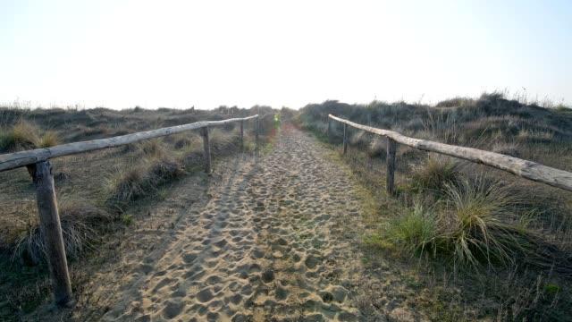 vidéos et rushes de sandy path too the beach in the morning, punta sabbioni, venice, venetian lagoon, mediterranean sea, veneto, italy - aller de l'avant