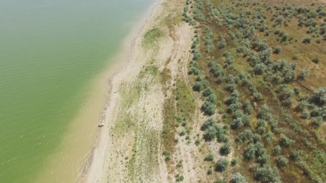 AERIAL: Sandy shore of pond in countryside