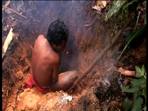 sanema huntsman fans coals to smoke out armadillo from nest southern venezuelan rainforest - smoke physical structure stock videos & royalty-free footage