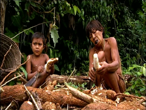 stockvideo's en b-roll-footage met sanema mother and child skin yuka root with machetes for cooking southern venezuelan rainforest - latijns amerikaanse cultuur