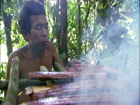 sanema tribesman dries vinola bark to extract sap to for use as sakona hallucinogenic snuff southern venezuelan rainforest - snuff stock-videos und b-roll-filmmaterial