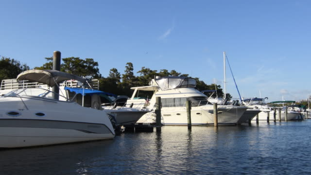 stockvideo's en b-roll-footage met sanford florida boat marinia boating on the st john's river in relaxed calm waters with cypress trees and moss 4k, - middelgrote groep dingen