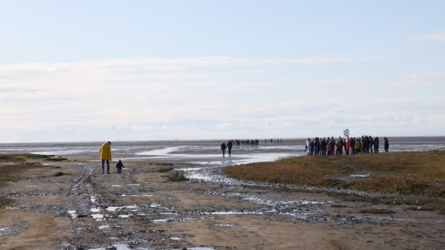 sankt peter-ording at fall - mud flat stock videos & royalty-free footage