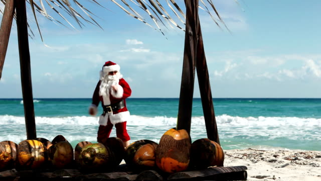 santa beach dancing - funny merry christmas greetings stock videos and b-roll footage