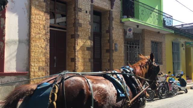 vidéos et rushes de santa clara, cuba: horse drawn carriage passing on a city street - voiture hippomobile