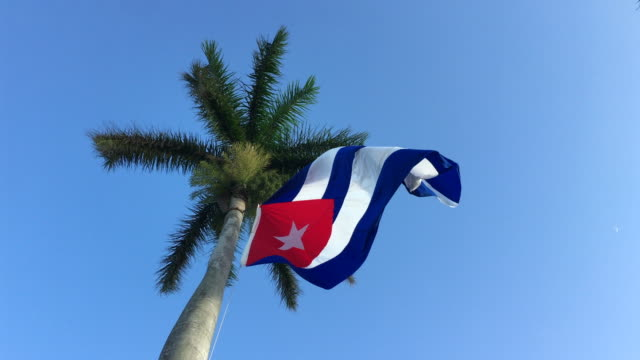 Santa Clara, Cuba: Large Cuban national flag waving on a tall Royal Palm