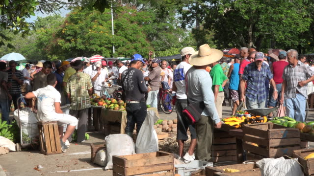 santa clara, cuba: the 'sandino' sunday farmer's market, general atmosphere from a distance - commercial event stock videos & royalty-free footage