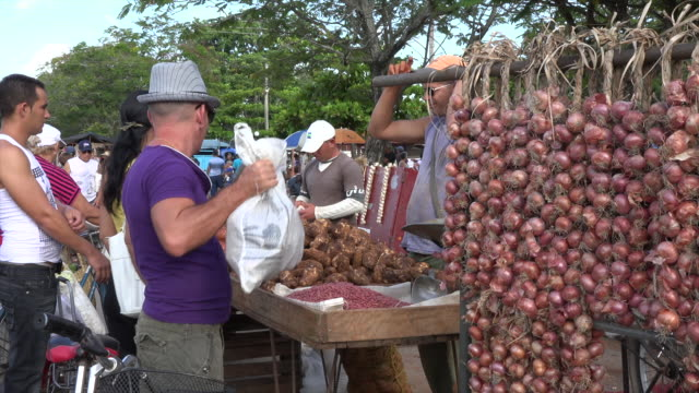 santa clara,cuba: sunday market, real people selling agricultural produce to the population - onion stock videos & royalty-free footage