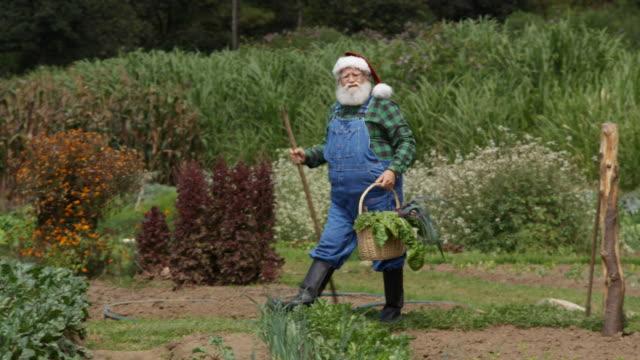 Santa Claus harvesting in his farm.