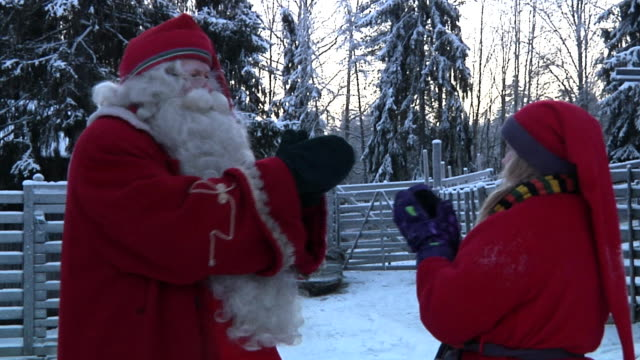 santa claus in his land of rovaniemi giving instructions to his elves shot on november 2010 - hooved animal stock videos & royalty-free footage