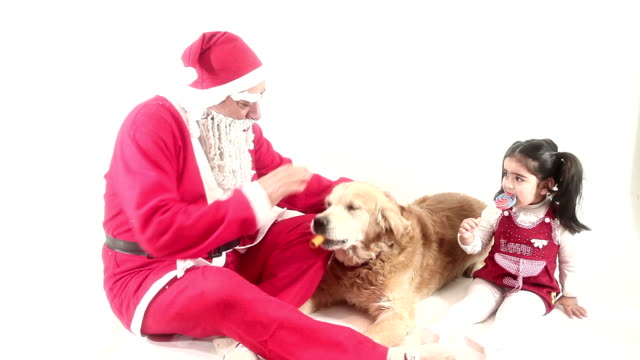 hd :santa claus & little girl & dog &present&eating - overweight dog stock videos & royalty-free footage
