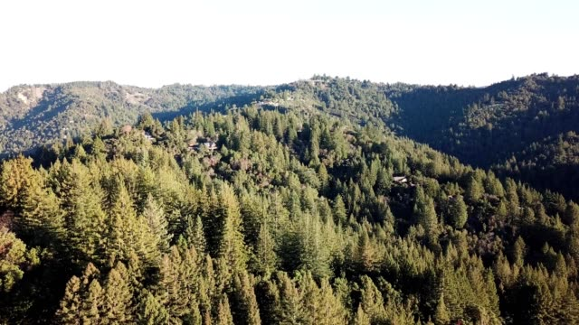 santa cruz mountains in california - santa cruz california stock videos and b-roll footage