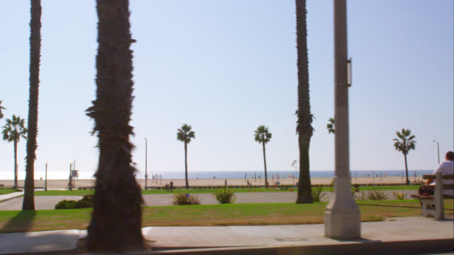 ts ws santa monica beach promenade and palm trees, red r3d 4k, 4k, 4kmstr - promenade stock videos & royalty-free footage